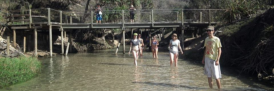 Fraser Island 2 Day Camping 4wd Adventure Tour Sunrover