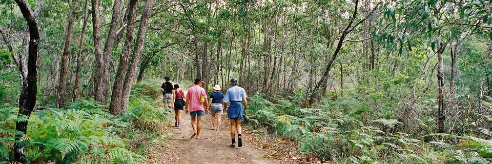 Walk to Mt Tempest, Moreton Island