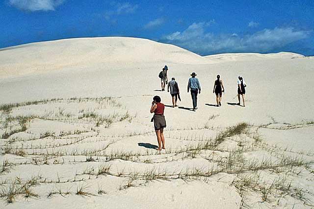 Walking Sand Dune 2 Jpg