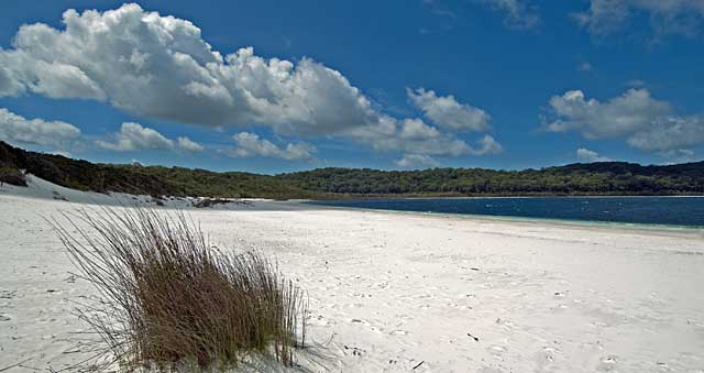 Sunrover Tours - 2 Day Fraser Island Safari